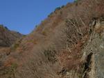 2006.12.16 yama004.jpg