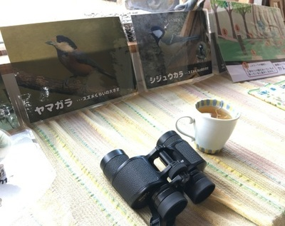 IMG_5801.JPG