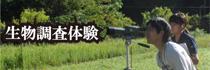 banner (5).jpg