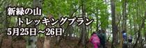 banner (7).jpg