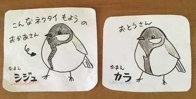 image1 (6).jpeg
