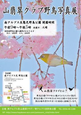 山翡翠クラブ 写真用-ポスター 11月.jpg